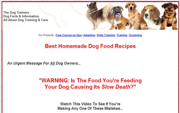 Click http://www.TrainPetDog.com/h/petproducts/dog-diet.html To Watch A Video To See If You're Making Mistakes In Feeding Your Dog.