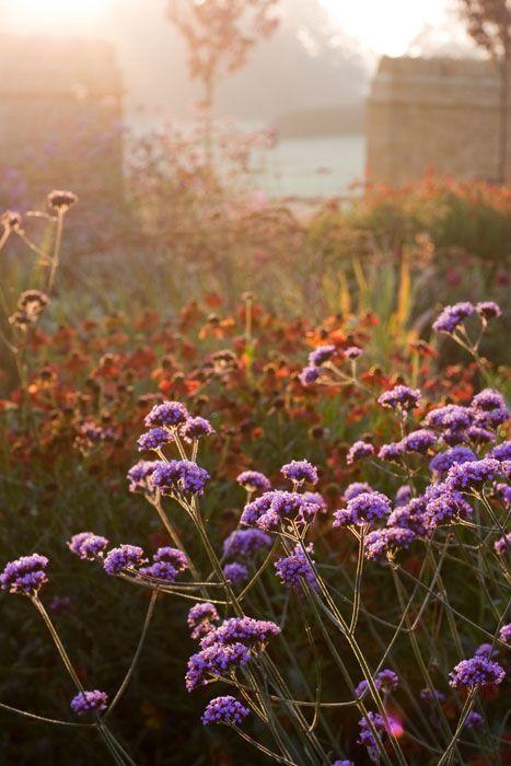 Garden Design Portfolio, Farmhouse Garden, by Nicholsons Garden Design, Oxfordshire