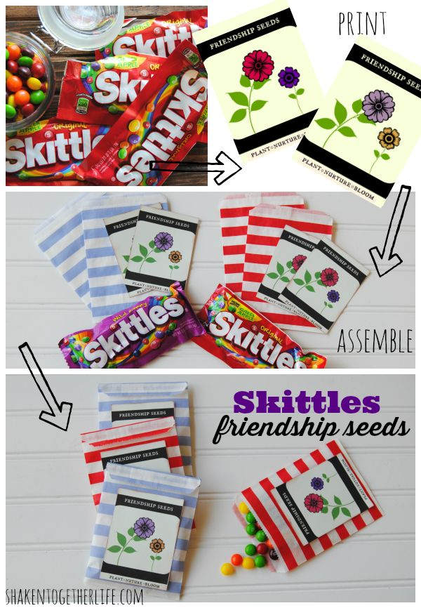 How to make Skittles friendship seeds and cute seed packet printable!