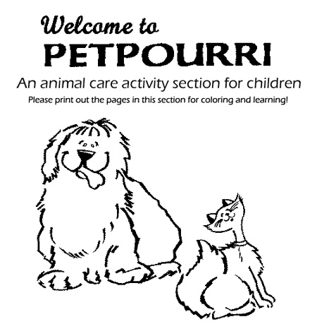 Pet Care Activities Worksheets For The 3 Cheers Animals Curriculum