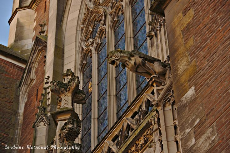 A visit to France - Toulouse (3)