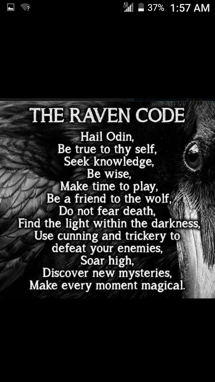 Sayings About Ravens: Best 25+ The Raven Ideas On Pinterest