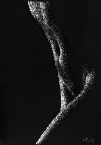 Out of the Dark, scratchboard, 30 x 20 cm