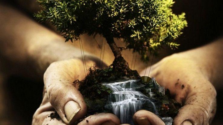 Помощь окружающей среде или «зеленая» жизнь совершенно не обязательно должна быть связана с головной болью. Наоборот, зачастую это очень просто. Да и мысль о том, что один человек ничего не изменит…