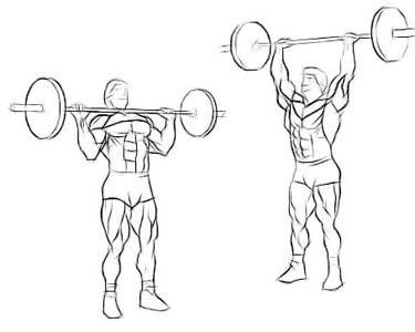 É possível realizar um treino apenas com barras e halteres?
