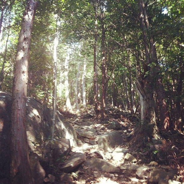 日本の世界遺産 紀伊山地の霊場と参詣道 2004年7月 文化遺産登録 和歌山県