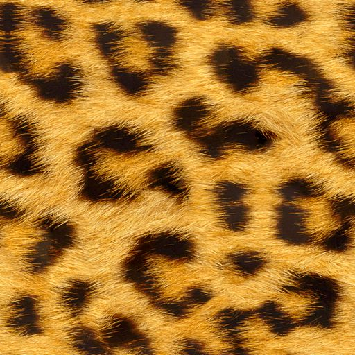 http://artbaggage.com/wp-content/gallery/fur-animal-patterns/leopard_fur_512x512.png