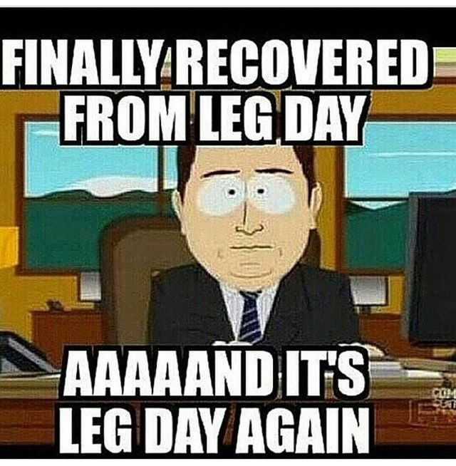 25+ Best Ideas about Leg Day Memes on Pinterest | Leg day ...
