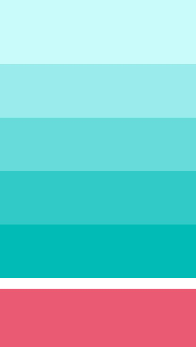 iphone.organizer_torquise.jpg 640×1,136 pixels