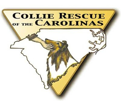 COLLIE RESCUE OF THE CAROLINAS is a 501c3 dedicated to the safety and welfare of purebred rough and smooth collies in SC and NC. Secondary goal is the welfare of the canine species and education of people that interact with them. Providing food, shelter, transportation, and medical treatment to collies in their care; and education to interested persons.  Find CRC on  Facebook: https://www.facebook.com/pages/Collie-Rescue-of-the-Carolinas/218404198186769?ref=ts