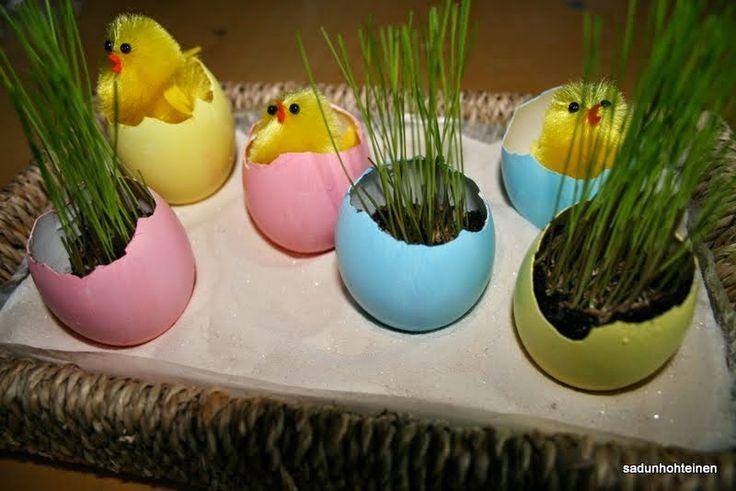 pääsiäismunat ruoholla ja tipuilla
