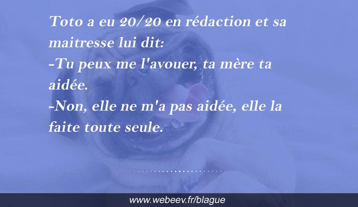 #Blague de Toto #humour