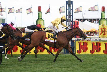 RIVER JETEZ b m 2003 JET MASTER – STORMSVLEI Won: J&B Met (Gr.1) 2000m Won: Gold Bracelet (Gr.2) 2000m Won: Gold Circle Oaks (Gr.2) 2400m Won: Astrapak 1900 (Gr.2) 1900m Won: Umzimkhulu Stakes (Gr.3) 1400m Won: Victress Stakes (L) 1600m
