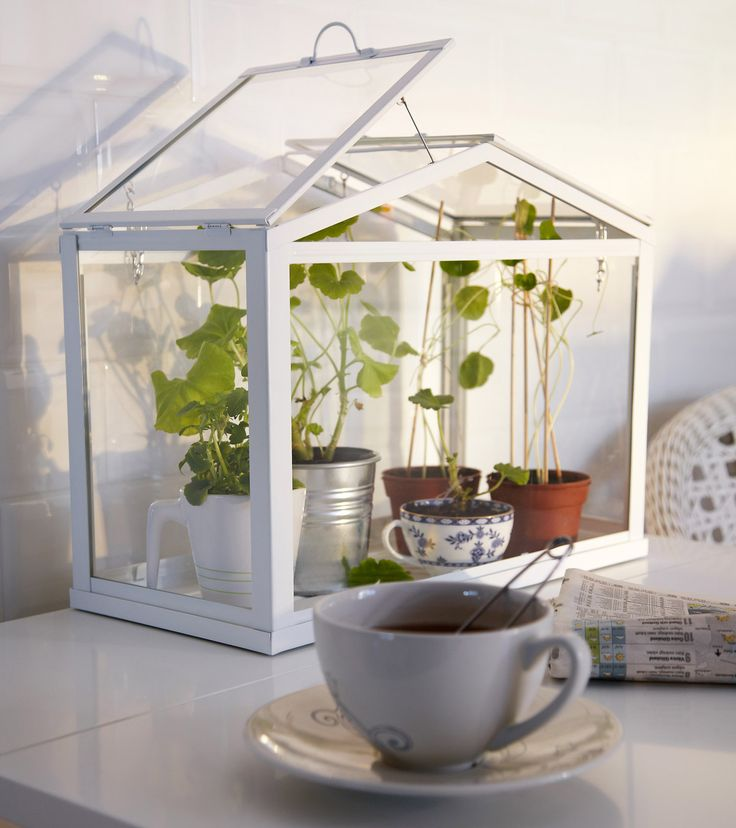 Sculpture of Apartment Herb Garden: Plush from Creativity and Installation