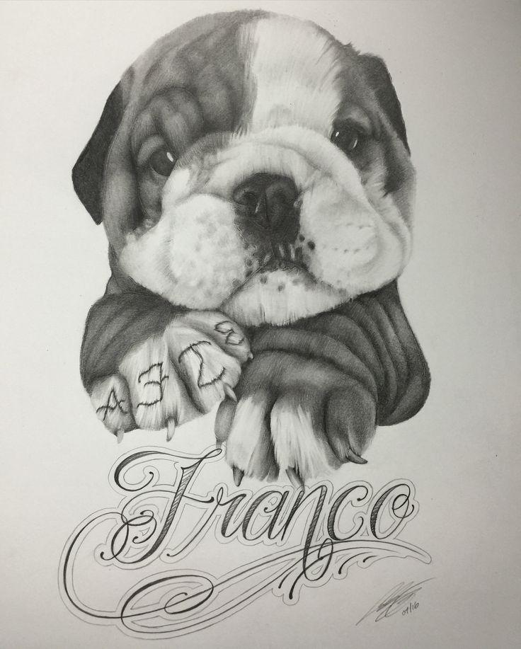 Drawing of my boss's Bulldog puppy.