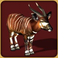 "zoo tycoon 2 ultimate africa | LES ANIMAUX DE ""AVENTURE AFRICAINE"""