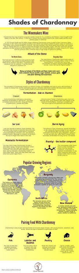 Shades of Chardonnay #Wine #infografía