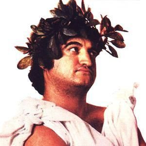 25 Best PARTY Toga! Animal House Style Images On Pinterest