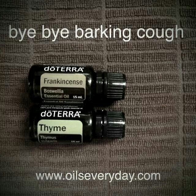 1524 Best Images About Essential Oils Doterra Young Living
