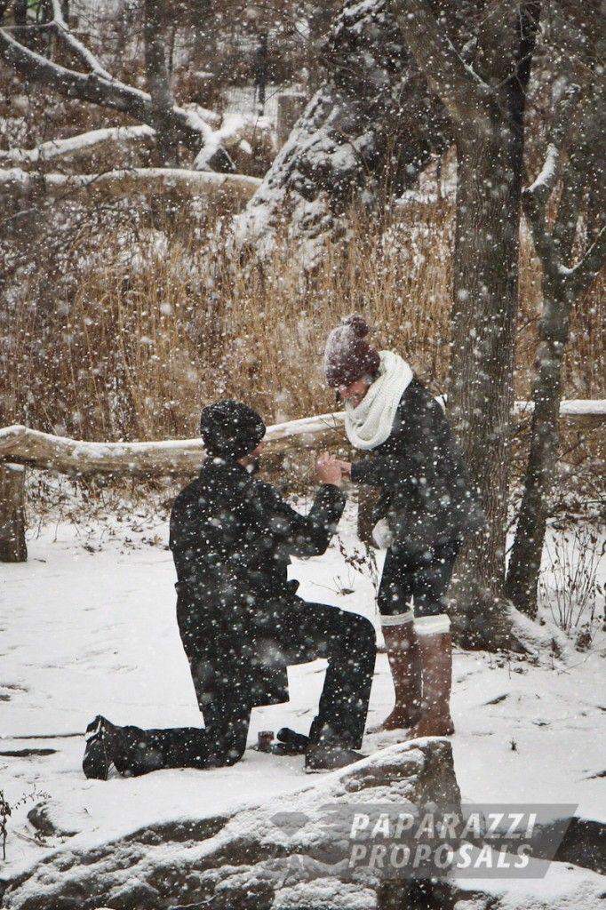 Does your soon to be fiancee love the snow? Take them on a winter stroll to soak in the beauty of the holiday season. As you drop to a knee under the falling snow, she will NEVER be expecting you to propose. A perfect surprise engagement!