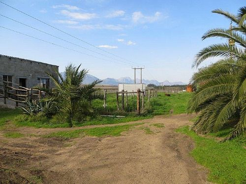 Smallholding livestock and vegetable farm for sale around Wellington in the Cape Winelands district of the Western Cape - http://www.agrifarms.co.za/cape-winelands/wellington/agf0116