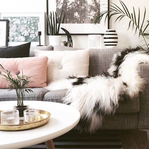 The perfect Scandi style Sunday corner. Complete with a natural white and black spot Icelandic sheepskin. ( via Pinterest)  Being a genuine, natural product no two sheepskins are ever the same. We are committed to #ethicallysourcing all of our products, that are by-products of the meat industry.  Shop the look via the link in our bio.  #hidesofexcellence #rug #icelandic #sheepskin #sheepskinrug #sheepskins #homedecor #homeinterior #interior #interior123 #interior4all #interiorstyled…