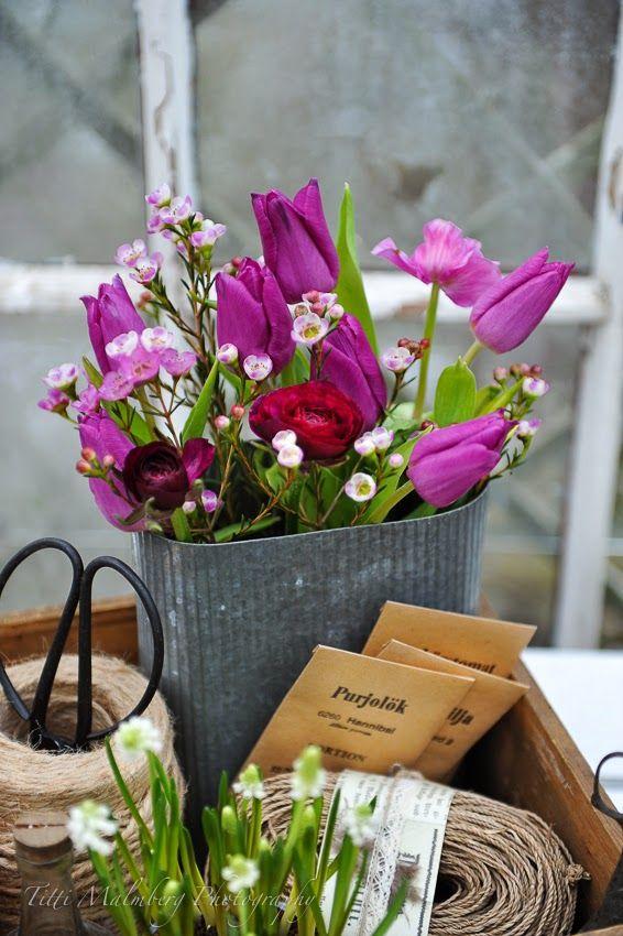 HWIT BLOGG: FLOWERS by titti & ingrid - Tulpanfrossa!