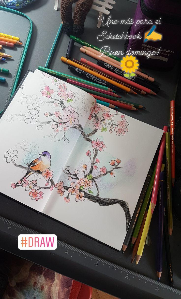 Flor del ciruelo, Scketchbook