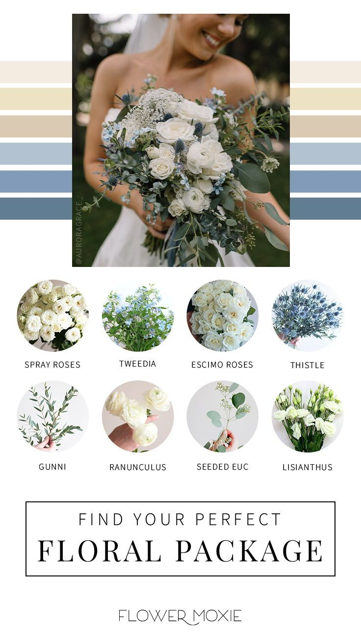 Cream And Dusty Blue Wedding Flower Packages Diy Bulk Fresh Wedding Flowers In 2020 Wedding Flower Packages Fresh Wedding Flowers Cream Wedding Flowers