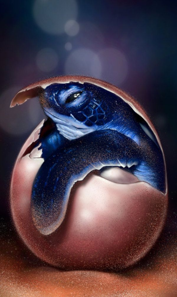 This would be an awesome tattoo   Baby Turtle by *giselleukardi
