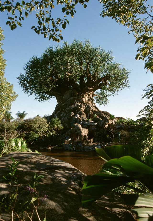 El árbol de la vida. Animal Kingdom WDW