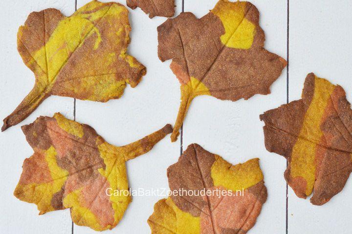 Deze leuke herfstkoekjes bak je met producten die je al in huis hebt. Als vorm gebruik je mooie herfstbladeren, gewoon bij jou in de buurt. Wat een prachtig effect? Hoe je ze maakt vind je in de bron.