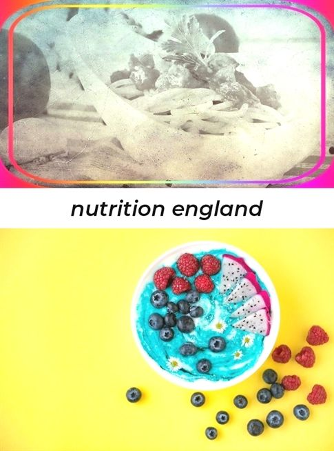 Nutrition England2302018082313081654 Nutrition In Human Beings