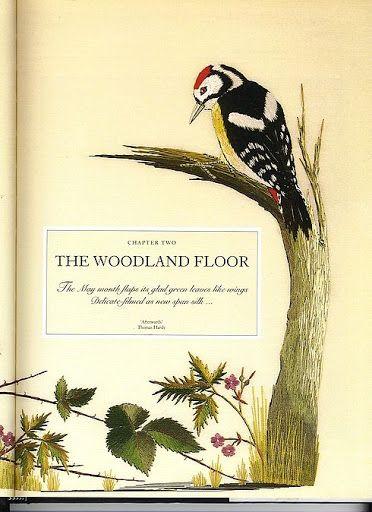 THE WOODLAND FLOOR - Geraldinapintura - Álbumes web de Picasa