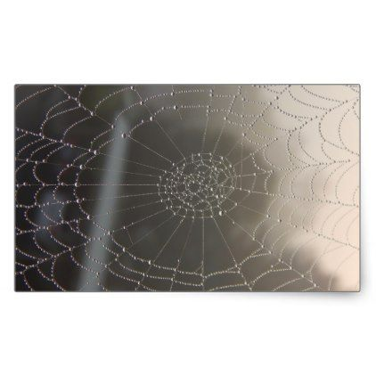 Spider Web With Morning Dew Rectangular Sticker - photography gifts diy custom unique special