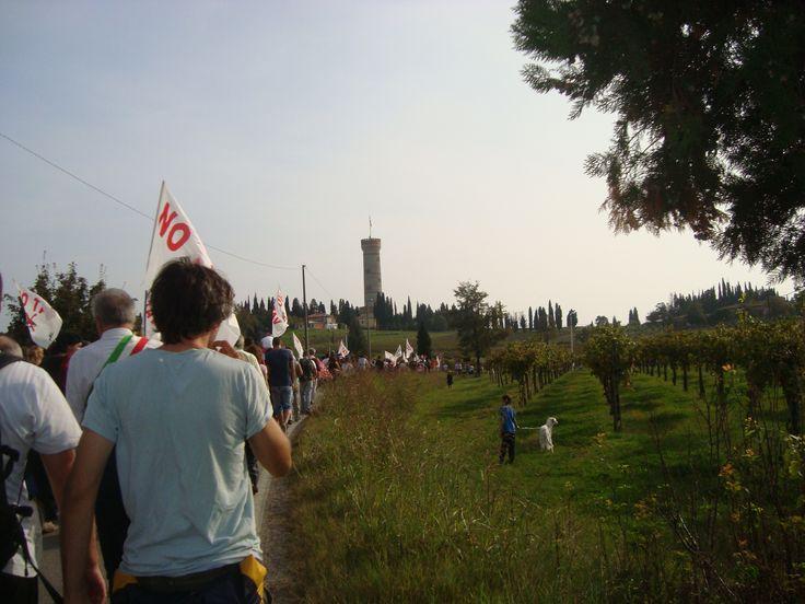 tra la Torre e le vigne