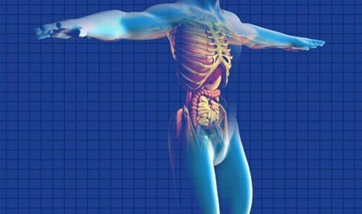 Malattia di Crohn: i sintomi di una patologia sempre più diffusa e molto pericolosa - http://www.sostenitori.info/malattia-crohn-sintomi-patologia-sempre-piu-diffusa-pericolosa/261223
