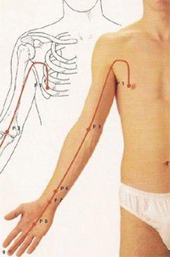 Risultati immagini per meridiani corpo