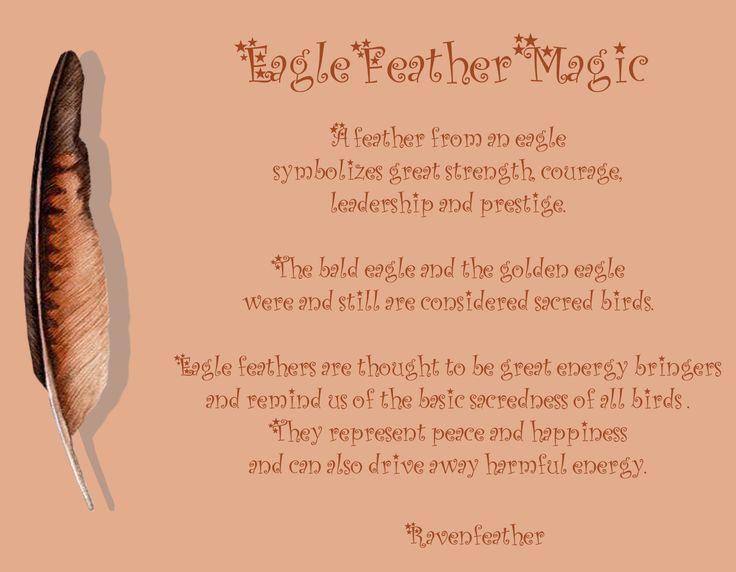 Eagle feather magic *Please check your local and federal guidelines for feather collection and possession!*