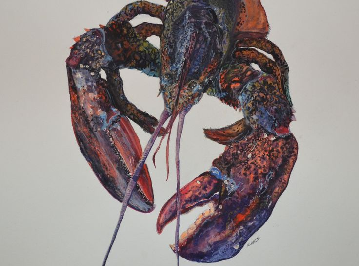 """Maine Lobster Art Original Watercolor Painting Size 17x13"""" Artist Kellie Chasse, Wall Art, Gift, Home Decor, Coastal, Nautical, Kitchen Art by KellieLynnArt on Etsy"""