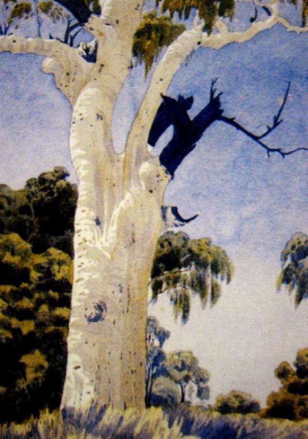 Albert Namatjira, Ghost Gum, watercolour, signed lower right, 38 x 28 cm