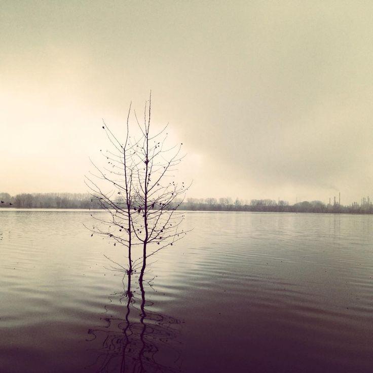 Lago Inferiore Mantova
