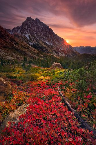 Mount Stuart Sunburst - Fall color at the foot of Mount Stewart, seen at sunrise.  Alpine Lakes Region, Washington State by Chip Phillips