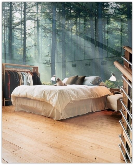 Glass wall bedroom!!