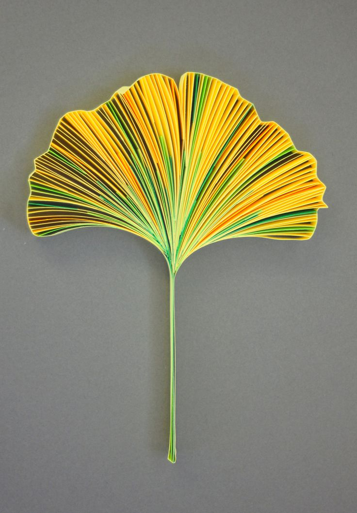 """GINKGO BILOBA, 3/8"""" quilling paper, unmounted. Approximately 3.9 x 5.1 in / 10 x 13 cm. JUDiTH+ROLFE"""