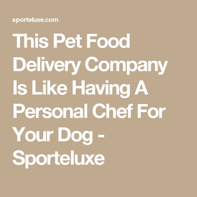 This Pet Food Delivery Company Is Like Having A Personal Chef For Your Dog - Sporteluxe