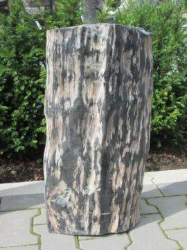 Fossiel hout 1410. Ons versteend hout komt onder andere uit de binnenlanden van Java-Indonesië. Het zijn stukken versteend hout die 2 tot 25 miljoen jaren oud zijn. Versteend hout wordt ook wel fossiel hout genoemd. Onze voorraad, van altijd ca. 100 stukken fossiel hout, wordt regelmatig aangevuld.