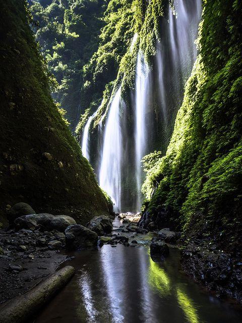 Hidden Wonder - Madakaripura Falls - Java - Indonesia #digiartIndonesia