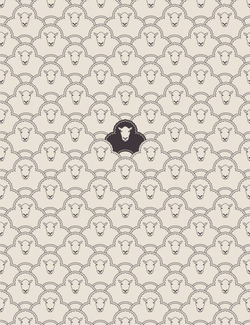 black sheep, cute pattern