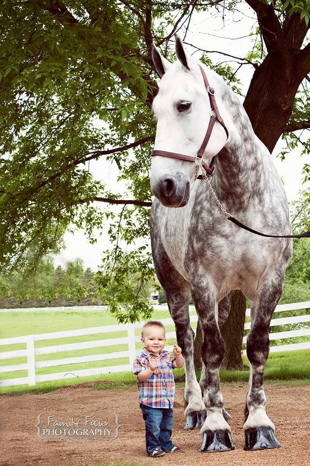 I know people freak out when they see this but I've seen it many times.  Horses know babies and small children won't hurt them and are therefore kind and gentle.  Even if they aren't that way with adults.